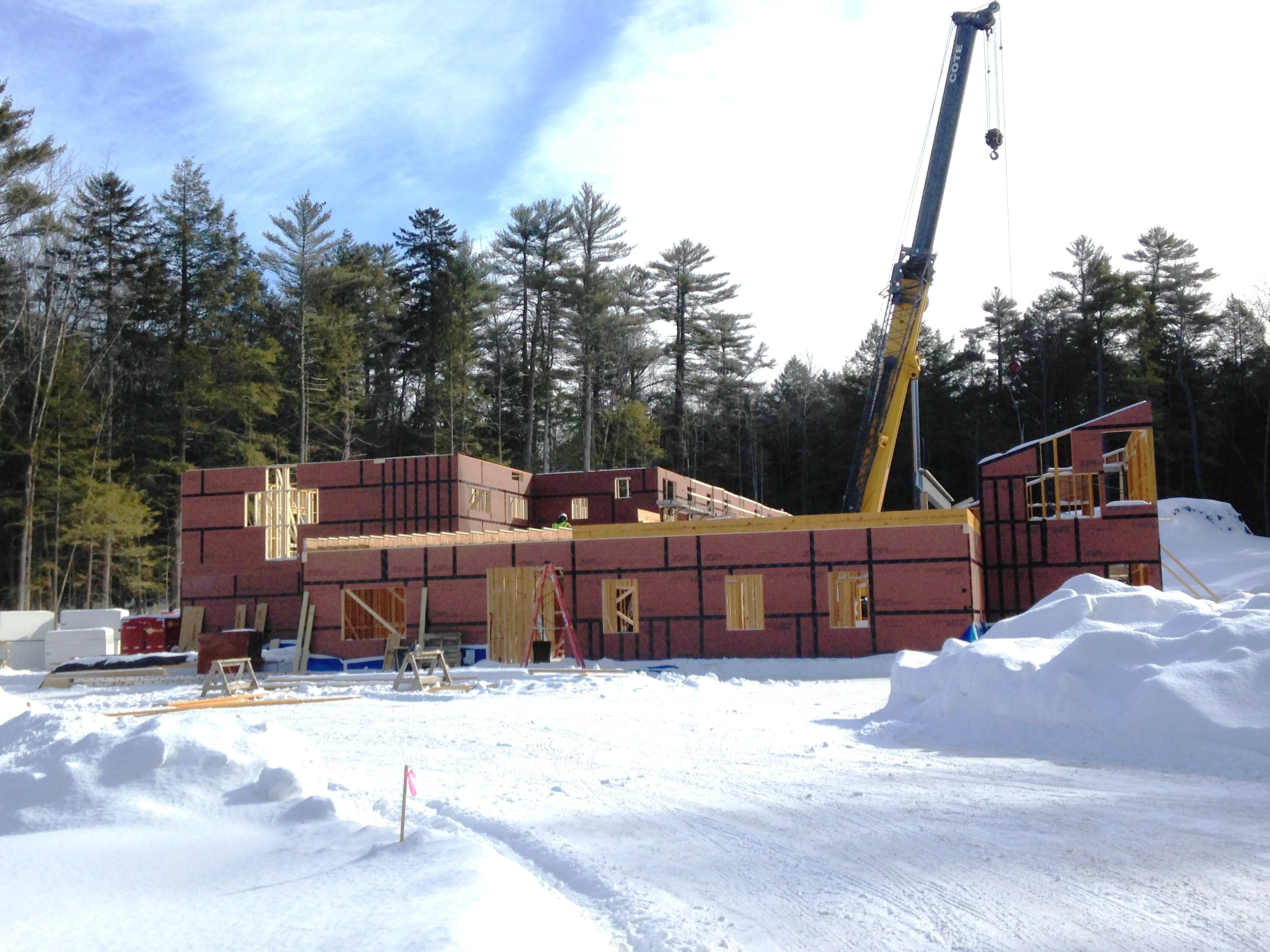 Crane for Panelization building