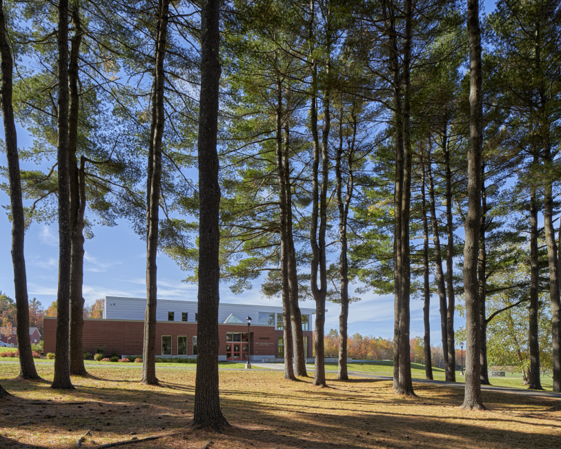 Dining Facility Entrance Through Pines, Kents Hill School